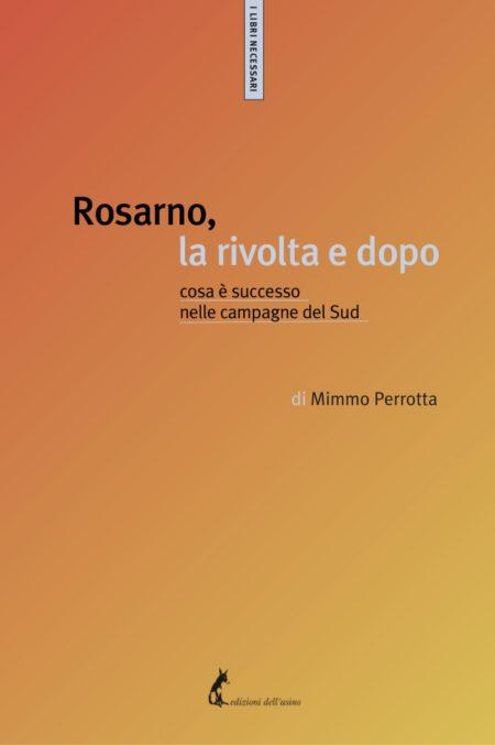 Rosarno, la rivolta e dopo. Cosa è successo nelle campagne del Sud